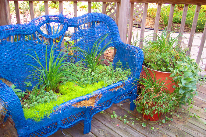 Container Gardening Idea How To Recycle An Old Wicker