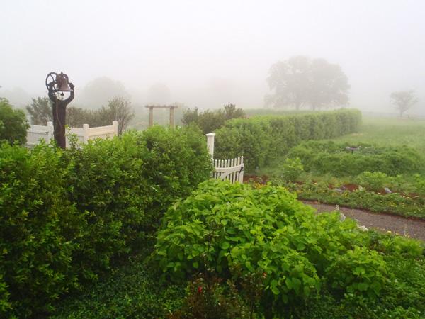 """""""Garden2Blog 2011"""" Event – Day 2 – Discovering P. Allen Smith's Garden Home Retreat"""