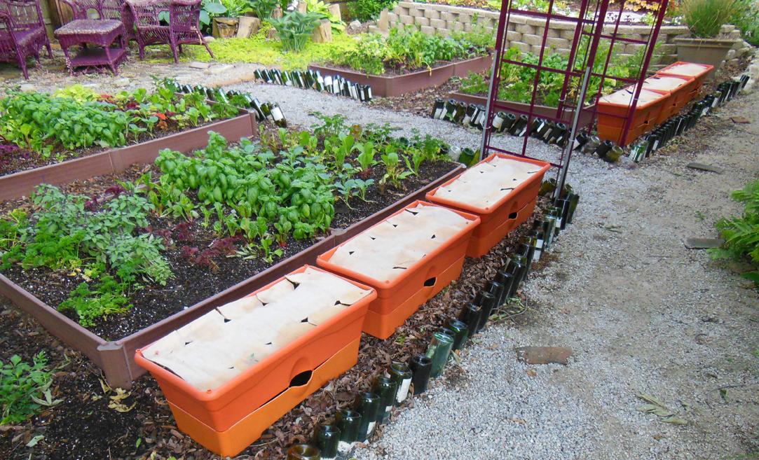 Grow Box Garden Patch Garden Ftempo