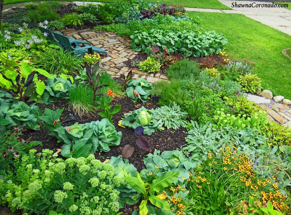 Front Lawn Vegetable Garden Of Shawna Coronado   12