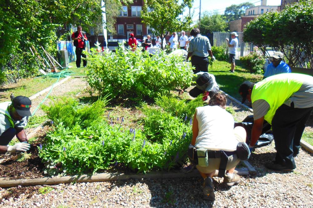 Morganway Community Garden
