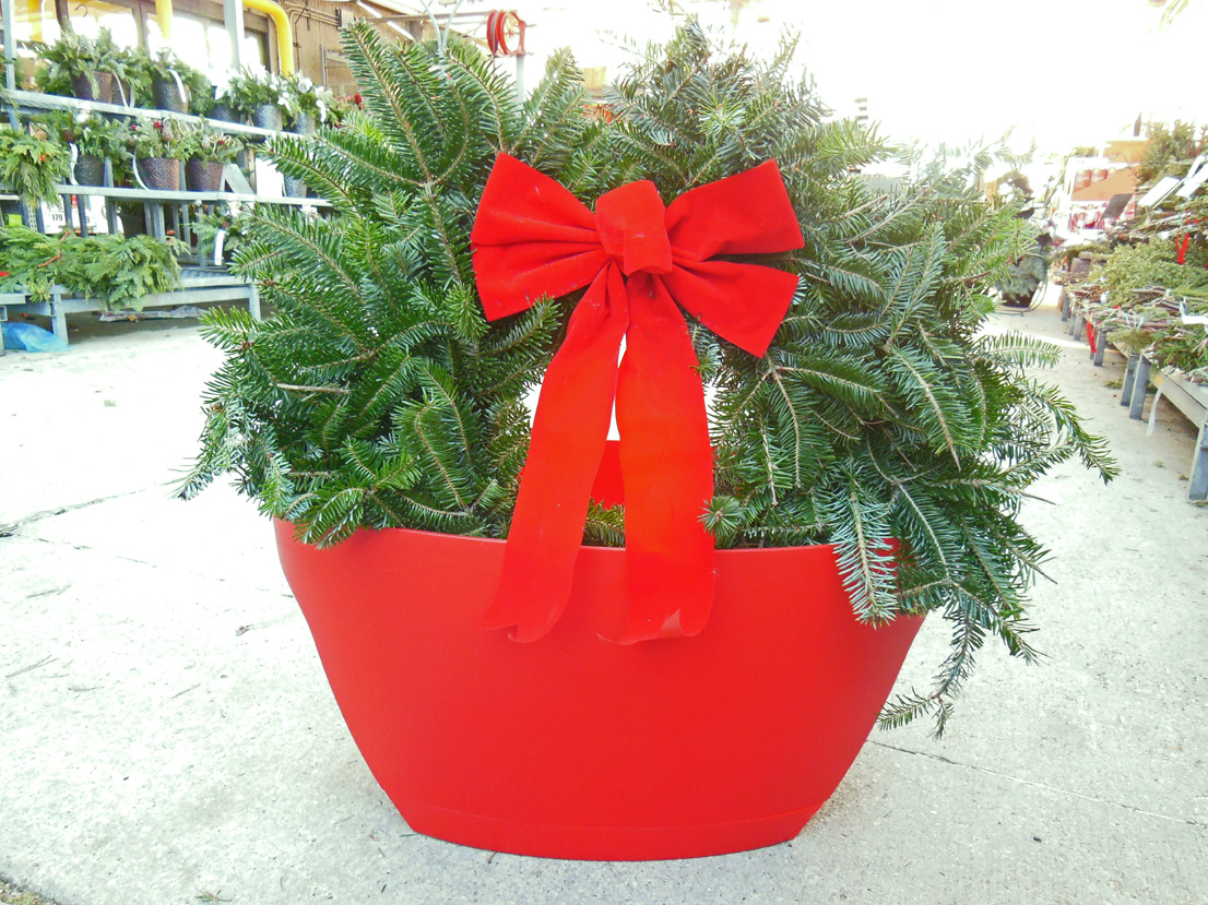 Awesome Recyclable Holiday Container Planters For A Balcony Garden