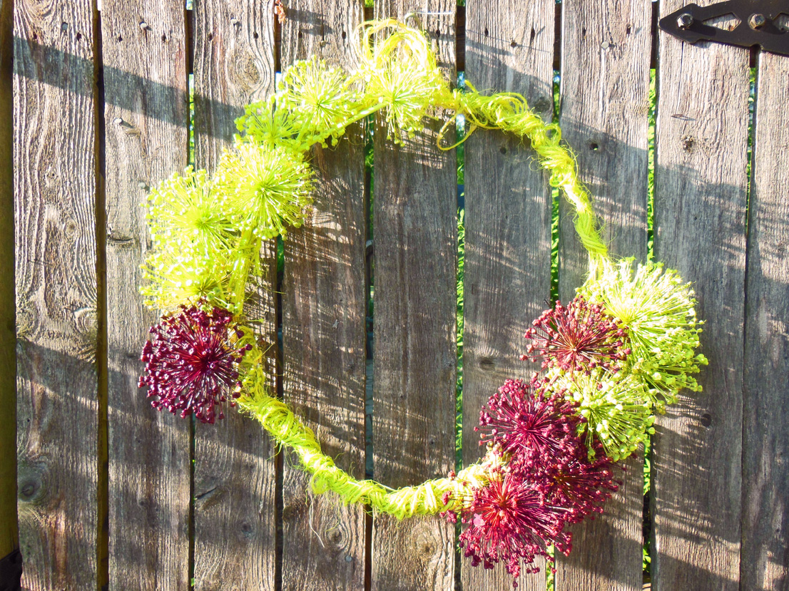 How To Make a Garden Wreath From Dried Allium Flowers