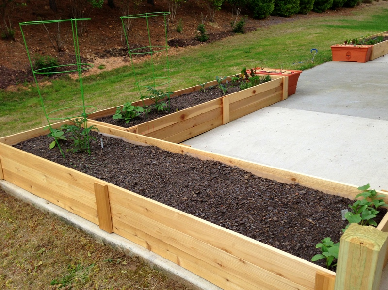 Michael Nolan's raised bed patio gardens