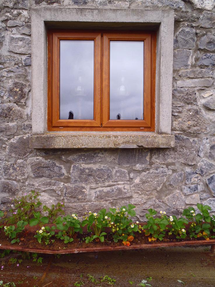 Irish window with strawberries