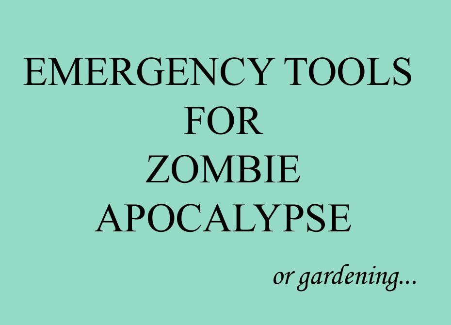 Zombie Apocalypse Sign
