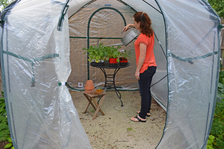 Pop Up Portable Greenhouse : Ways to reuse a portable pop up greenhouse shawna coronado