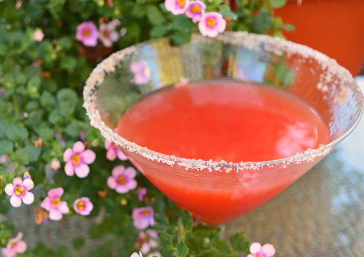The Shawna Martini Up Close