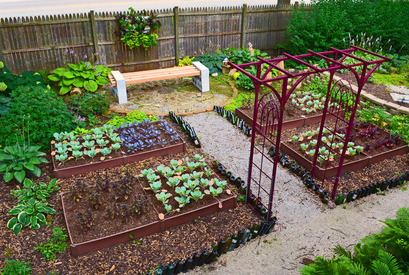 shade garden design vegetable colorblocking - Kitchen Garden Design