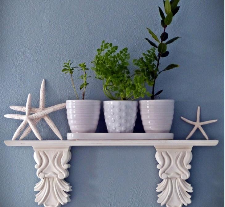 Houseplants Part I – Books and Ideas