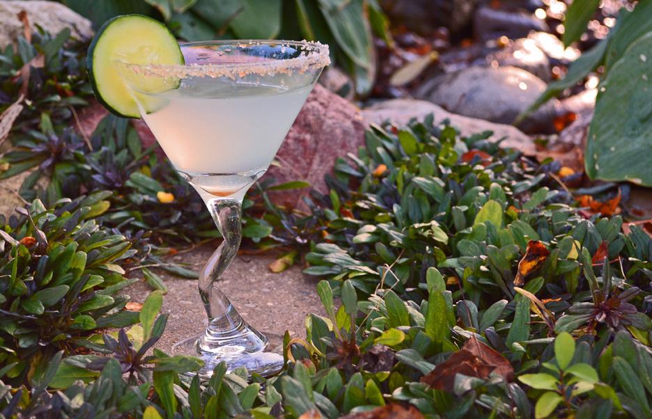 Cucumber Lemon Martini Cocktail Recipe and Video
