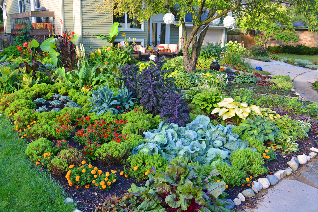 Captivating Front Lawn Vegetable Garden Design