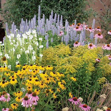 High Country Gardens Summer Dreams Pre-Planned Garden Photo