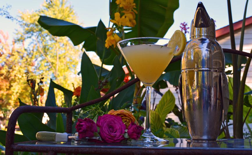 Lemon Thyme Herbal Martini Cocktail Recipe
