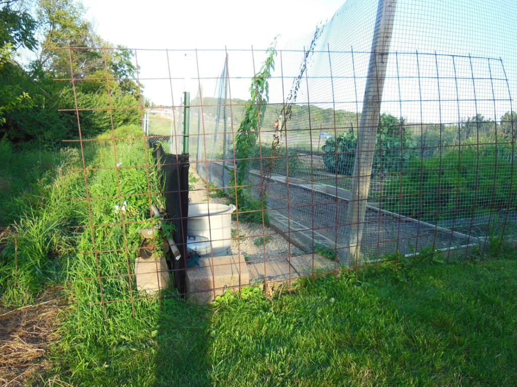 Militant Garden Fence Perimeter