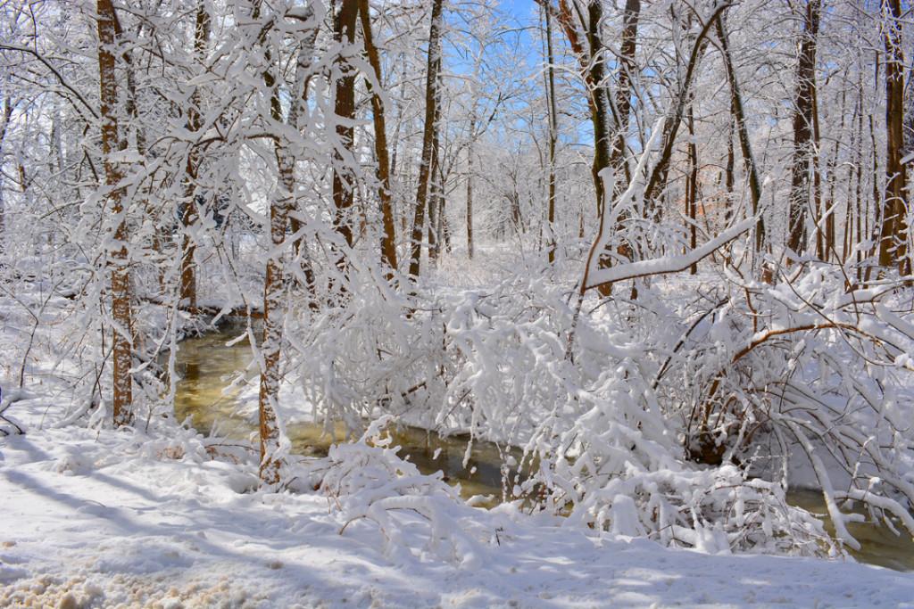 Fermilab winter snowy river photo
