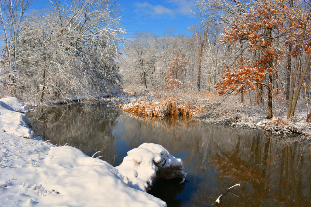 Snowy river and woods photo fermilab