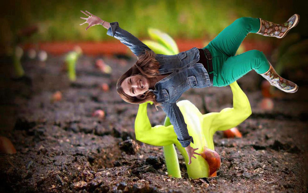 Shawna and the Hercules Plant
