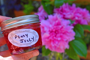 Pink Martini with Peony Jelly