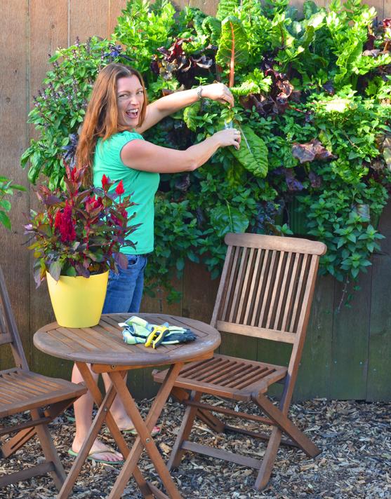 Living Wall Kitchen Garden Vertical with Shawna Coronado