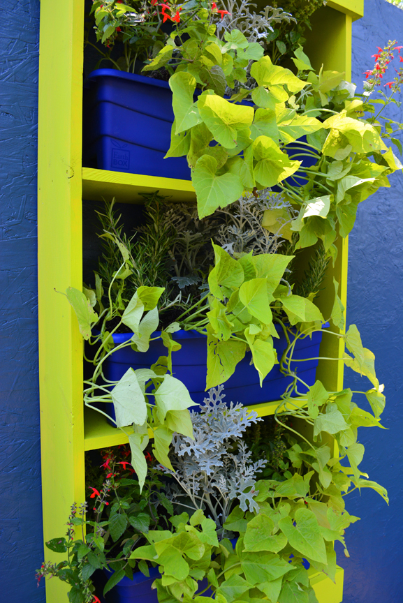 Living Wall Urban Water-Saving Garden Earthbox