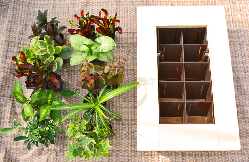 Home Office Living Wall Garden Components