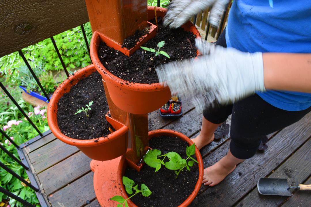 Garden Post Vertical Garden Planting baby plants