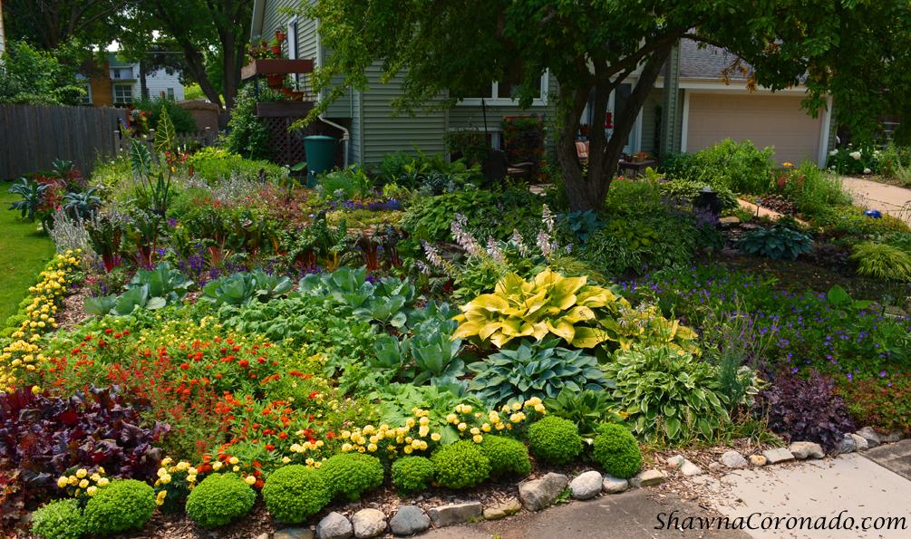 How To Build A Rainbow Garden Shawna Coronado