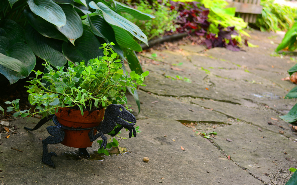 Dinosaurs for your Garden Containers