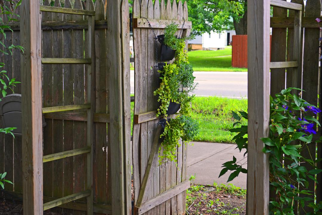 Living Wall Gate Pocket Garden