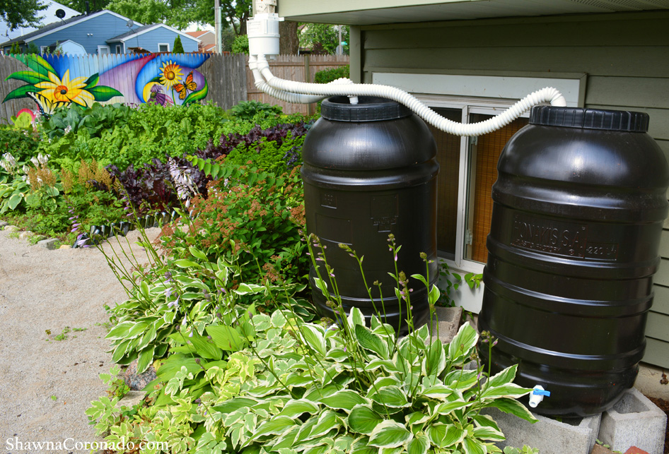 Double Rain Barrel Installation Shawna Coronado