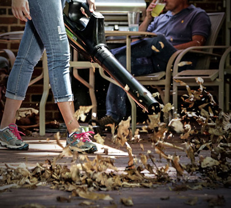 Green Works Leaf Blower Blowing Image