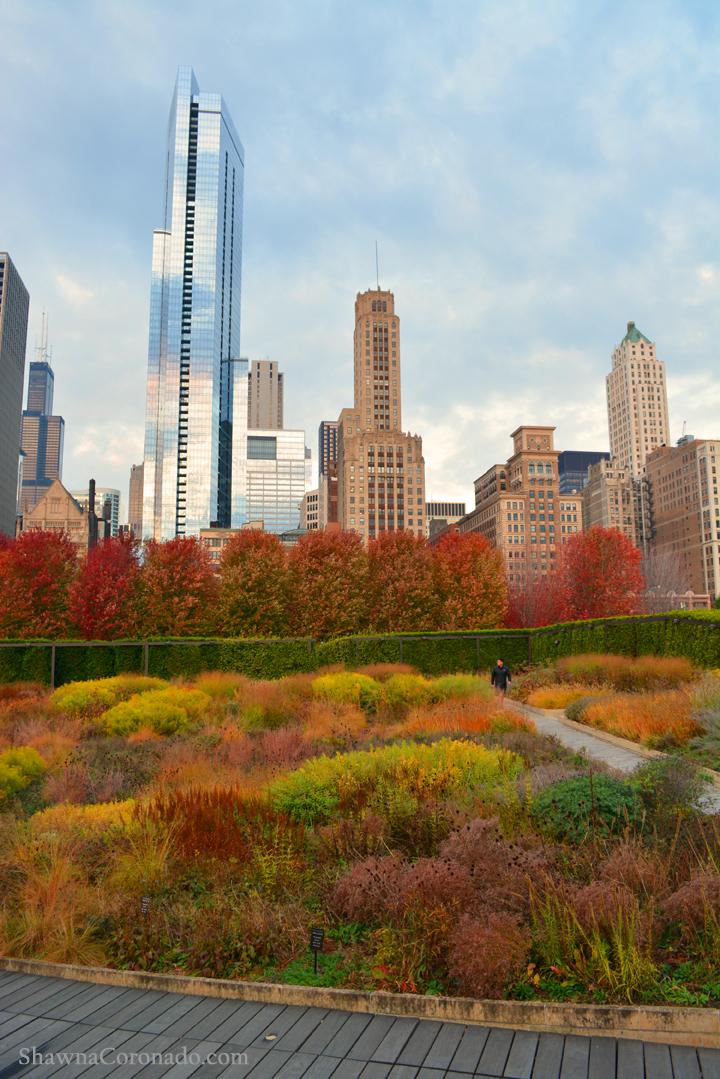 Fall Colors Lurie Garden Chicago © Shawna Coronado