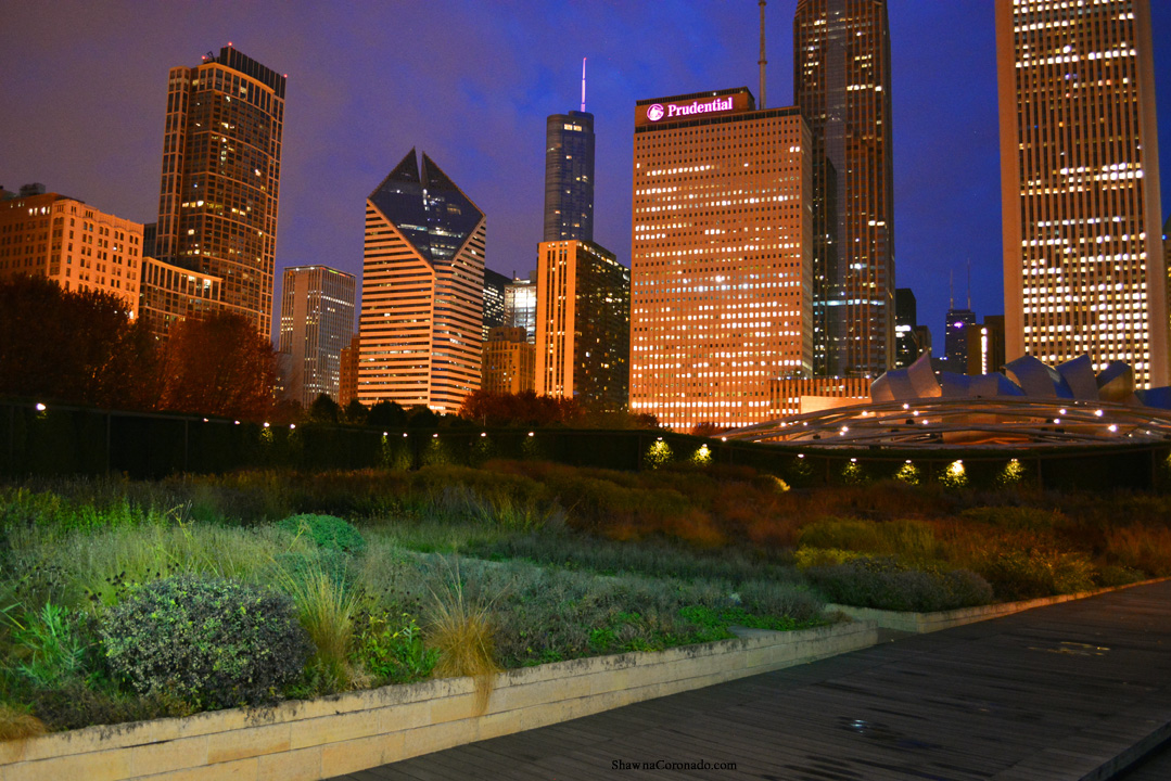 Before Dawn at The Lurie Garden Skyline View © Shawna Coronado