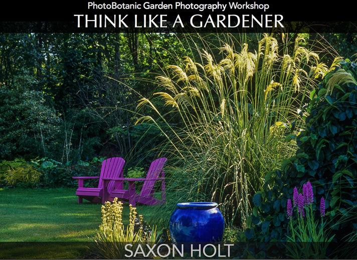 Saxon Holt Think like a gardener