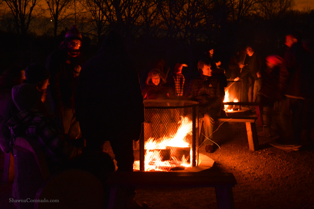Morton Arboretum Illuminations Around the Fire