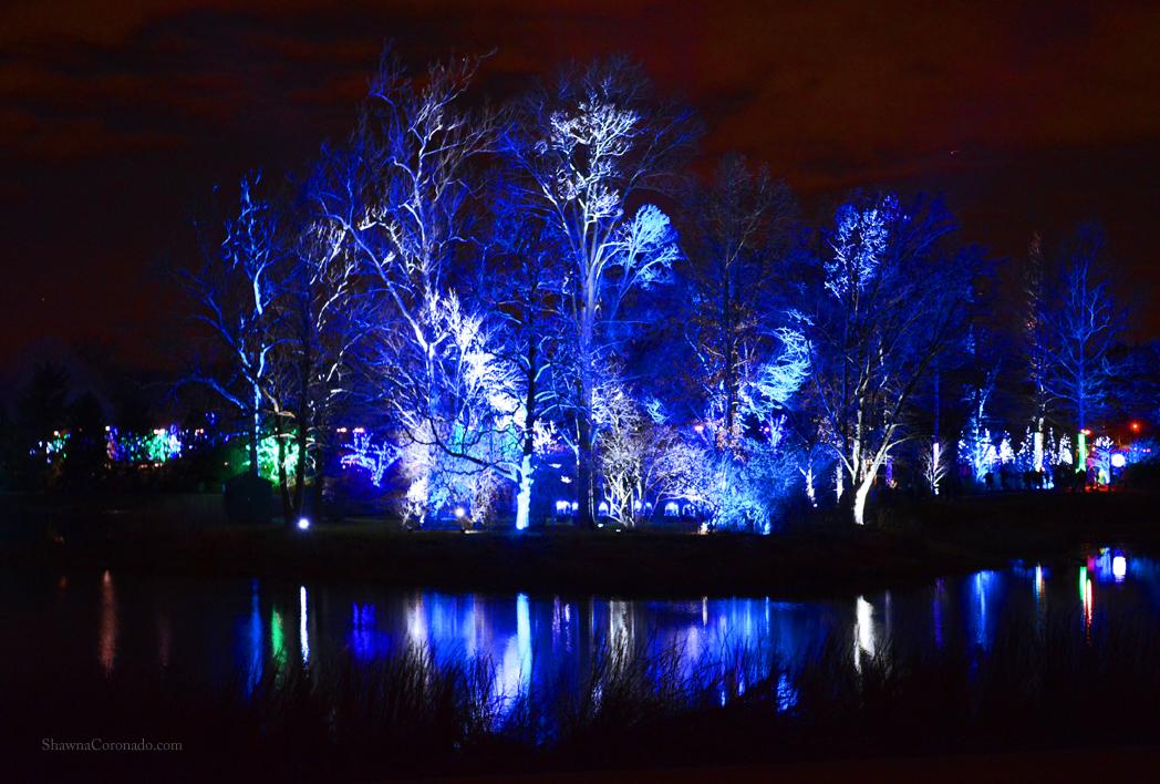 Morton Arboretum Illuminations Blue Water