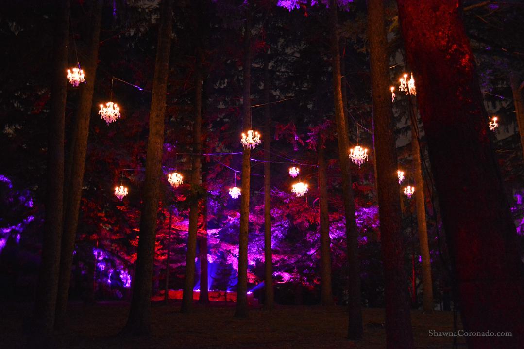 Morton Arboretum Illuminations Chandelier Trees
