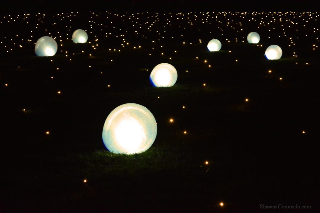 Morton Arboretum Illuminations Glowing Balls