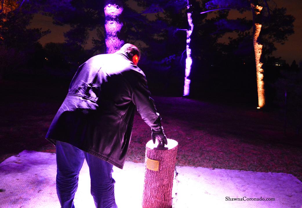 Morton Arboretum Illuminations Push the Button