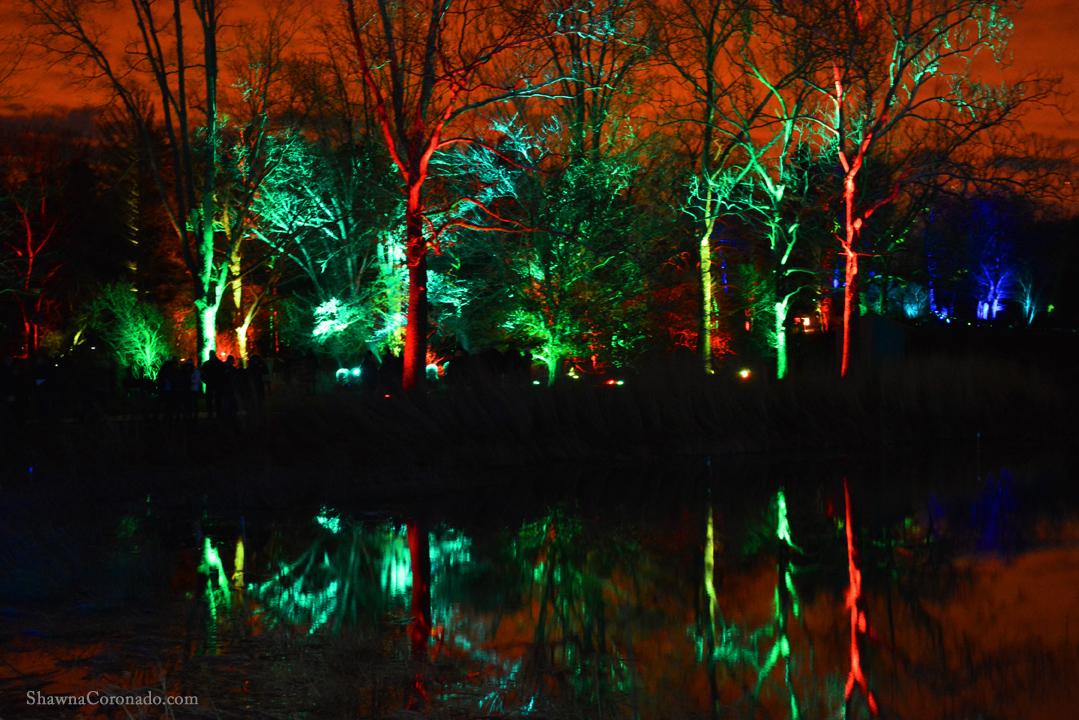 Morton Arboretum Illuminations Red and Green Lights