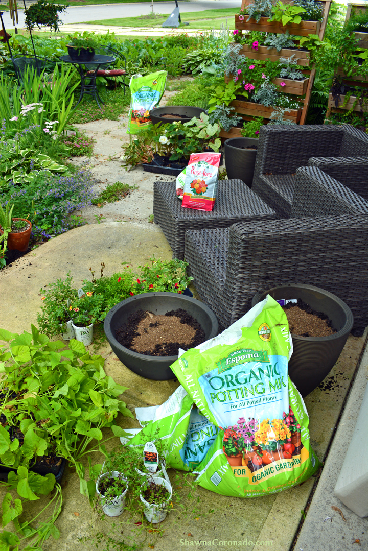 Container Gardens with Organic Fertilizer