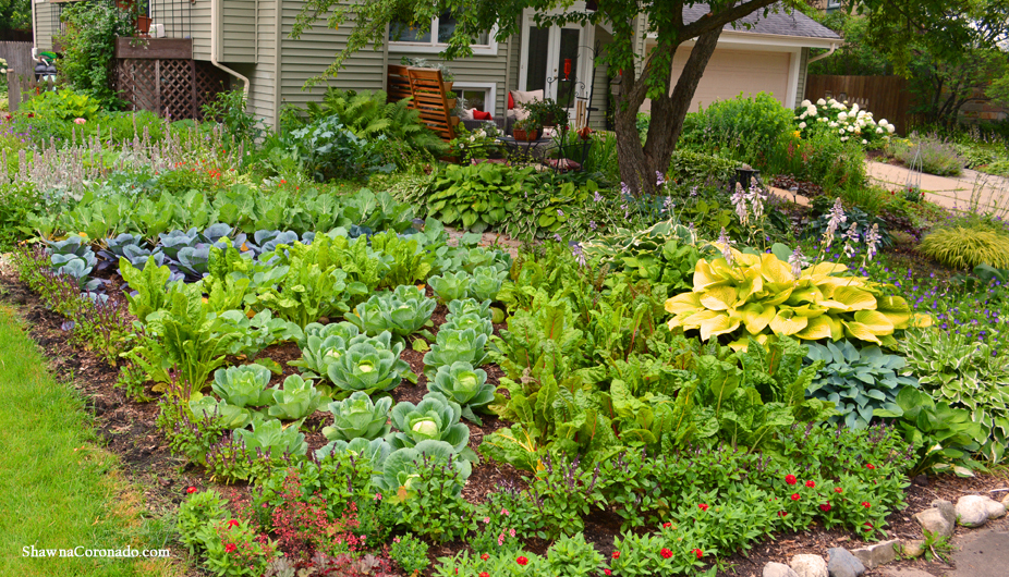 Front Lawn Vegetable Garden Design Shawna Coronado