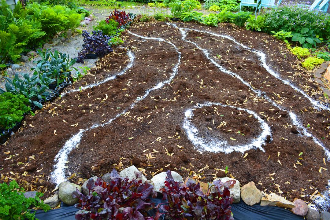 Garden As Art Use Flour as a Planting Guide