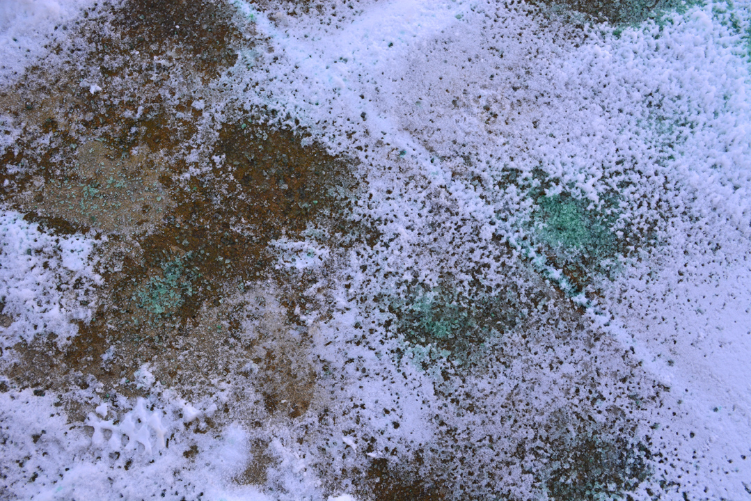 Ice Melt Versus Rock Salt In The Garden Shawna Coronado