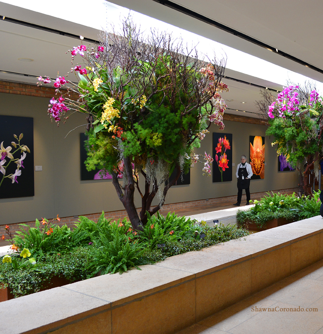 Chicago Botanic Orchid Show Art