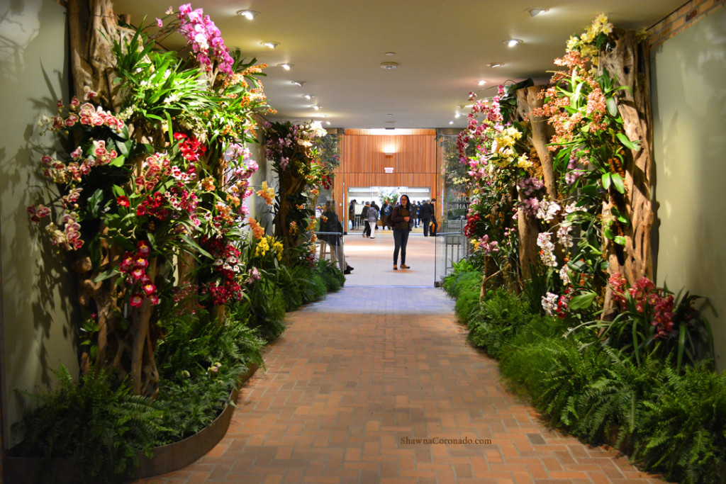 Chicago Botanic Orchid Show Entry Hall