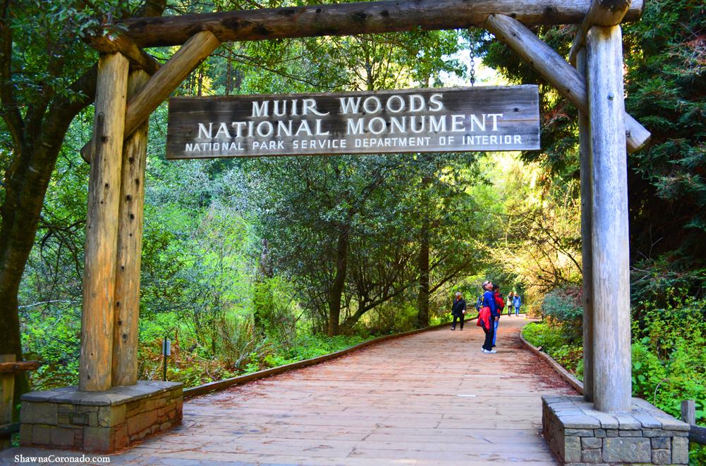 Muir Woods National Park Entrance copyright Shawna Coronado