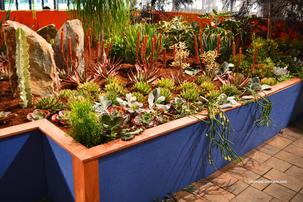 Superbe San Francisco Flower Show Succulent Garden