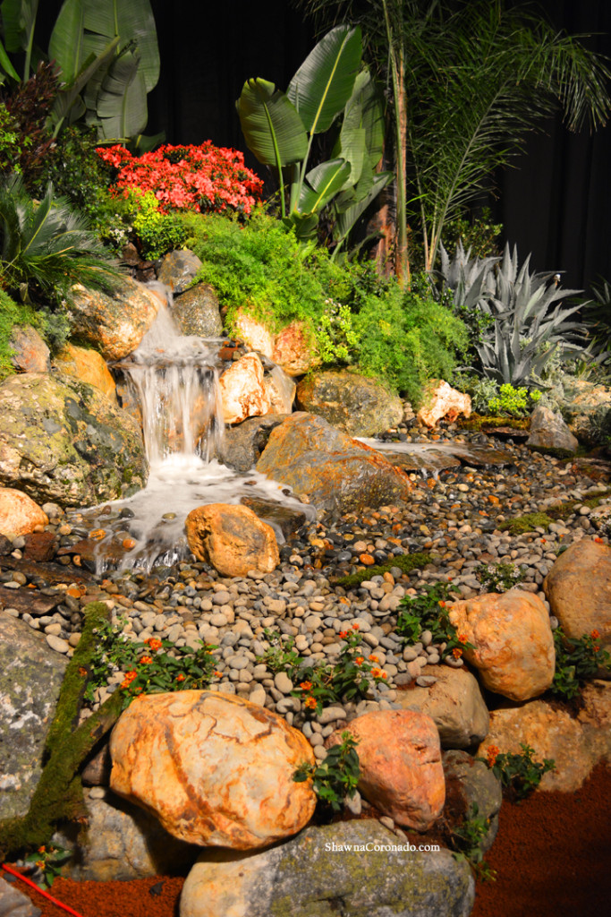 San Francisco Flower Show Water Garden